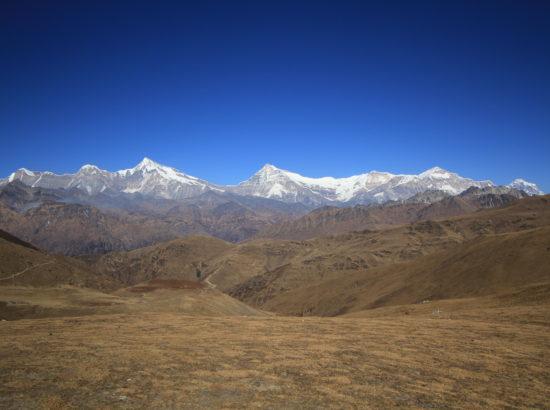 Guerrilla Trail Trek