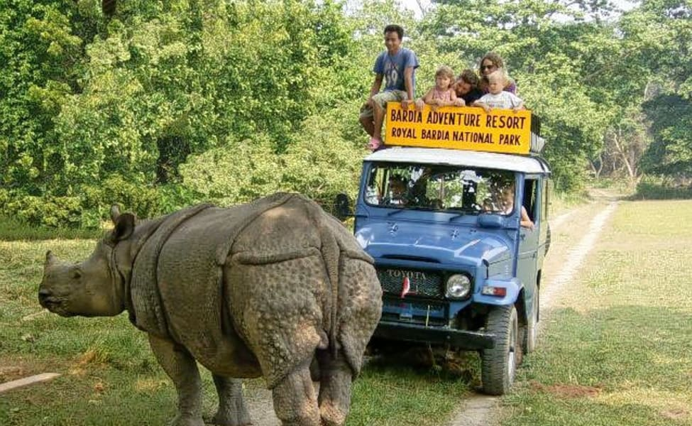 Rhinoceros in Bardiya National Park