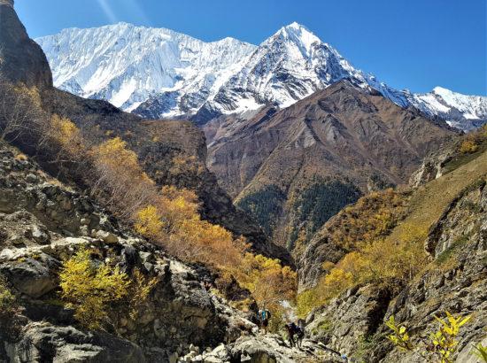Tashi khang Peak climbing