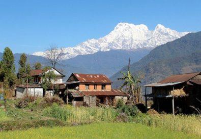 Pattale Village Tour