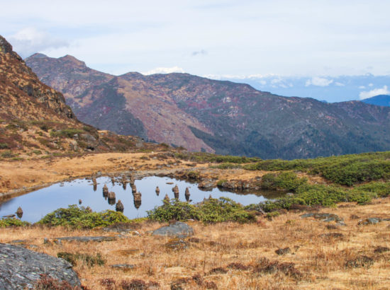 Bhutan Tour With 4 Days Druk Path Trek – 7 Days